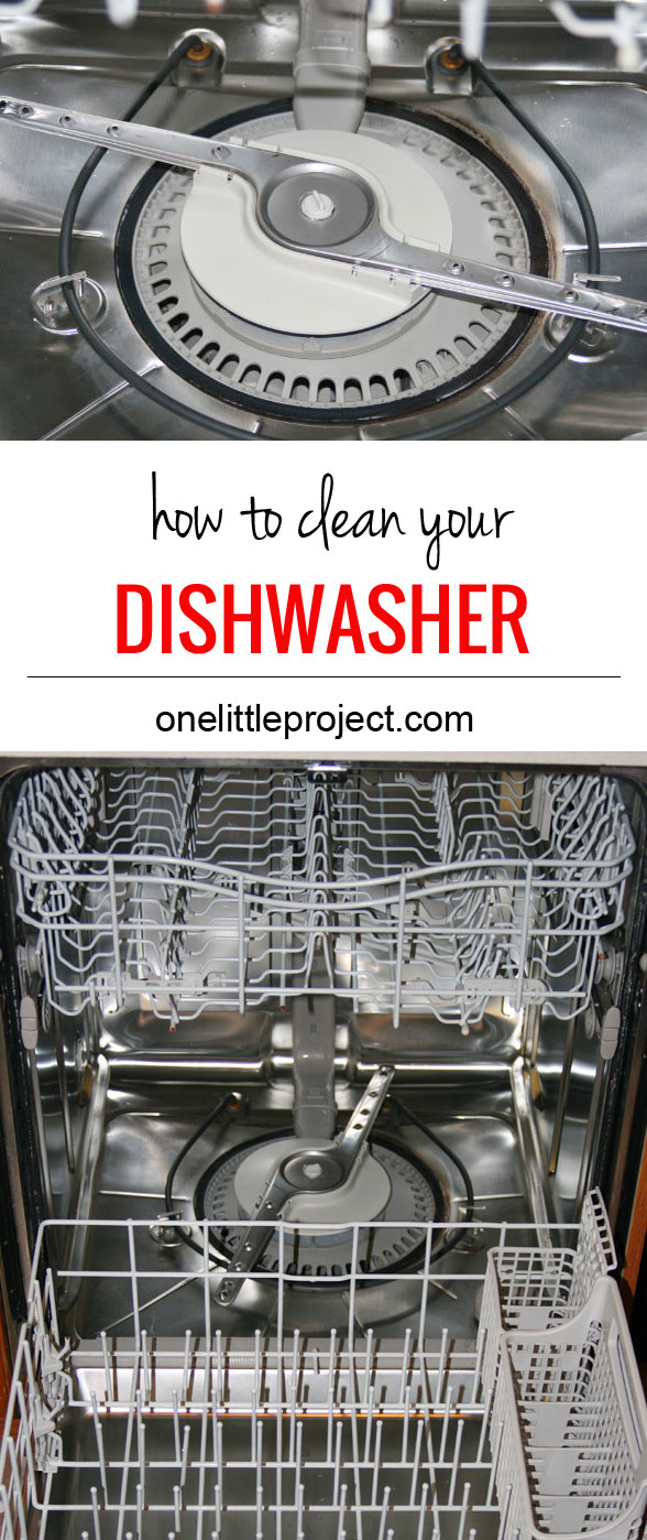 It had never occurred to me to clean our dishwasher, but our dishes came out so much cleaner after we did!