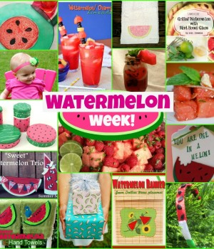 Watermelon Week! Day 2 – Watermelon towels, treat bags and salad