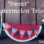 Watermelon Week!  Day 5: Watermelon outfit, trio and wrapping paper