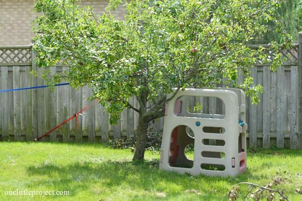 pear tree fallen over