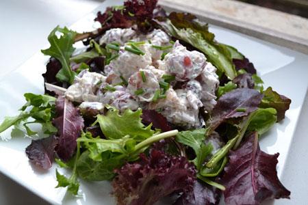 Terragon-Chicken-Salad