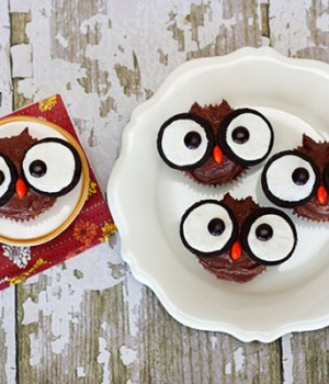 Super cute and easy owl cupcakes