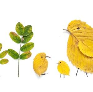 Autumn leaves kids craft ideas