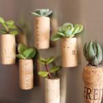 DIY cork planters as fridge magnets
