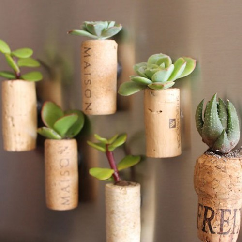 DIY cork planter magnets