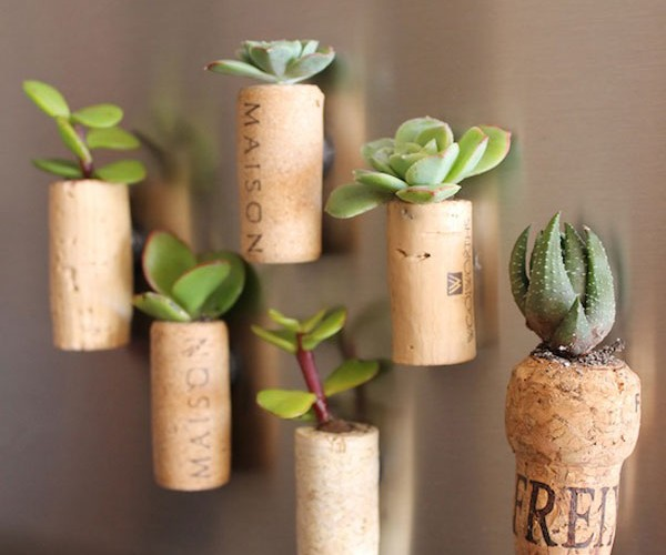 DIY cork planter magnets