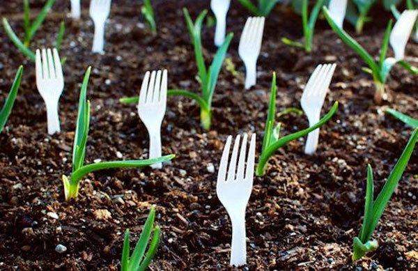 17 Clever Hacks for Your Vegetable Garden - Plant Forks in the Garden to Deter Pets and Animals