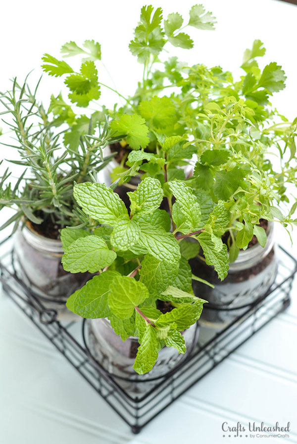 Eco-Friendly Homemade Mother's Day Gift Ideas - Mason Jar Herb Garden