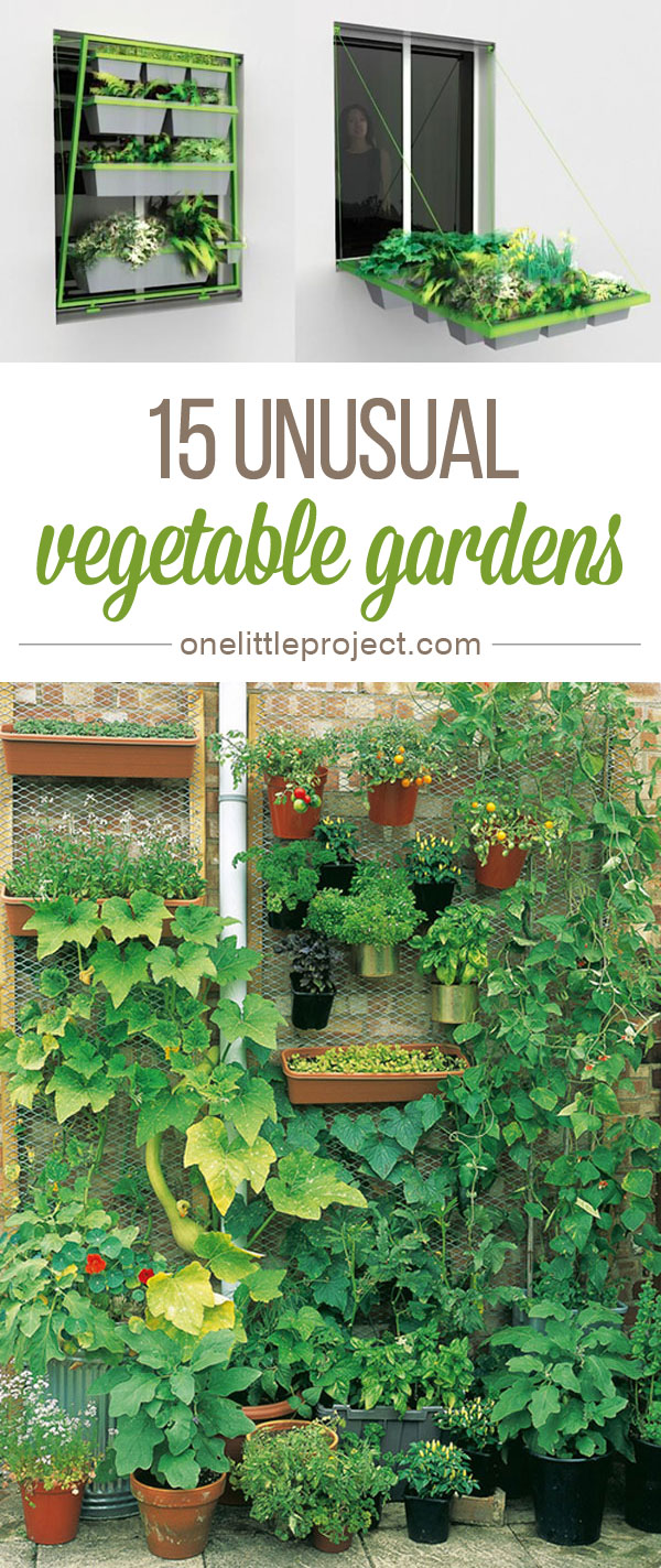 15 Unusual Vegetable Garden Ideas - Whether your yard is big, small, or just a balcony, this list has you covered!