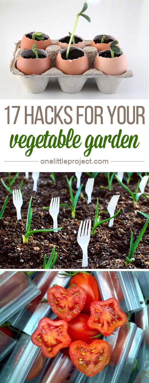 17 vegetable garden hacks these are so clever - Garden Hacks