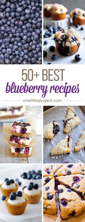 50-Best-Blueberry-Recipes