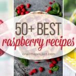 50+ Best Raspberry Recipes