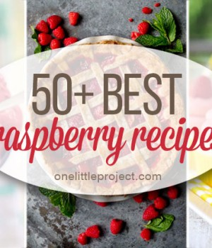 50+ Best Raspberry Recipes