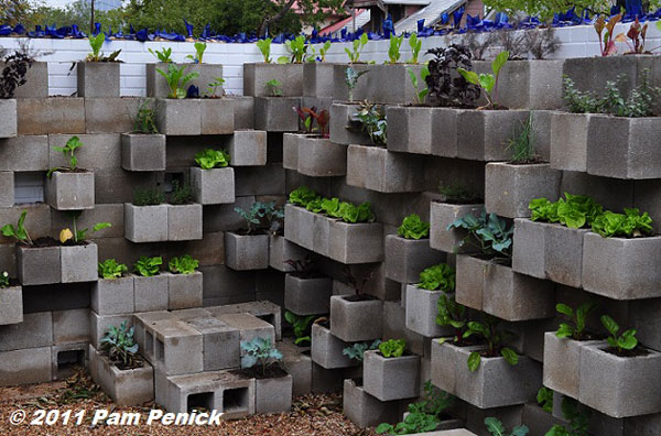 15 Unusual Vegetable Garden Ideas - Cinderblock wall vegetable garden