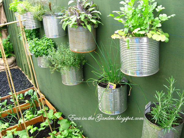 15 Unusual Vegetable Garden Ideas - Tin can vegetable garden
