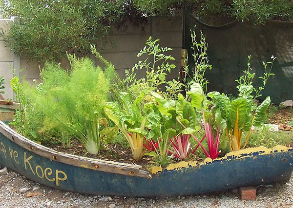 Unusual-Vegetable-Gardens