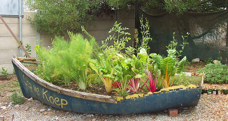 15 unusual vegetable garden ideas for Fun vegetable garden ideas