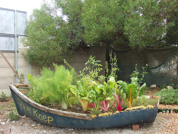 15 Unusual Vegetable Garden Ideas - Vegetable garden in a boat