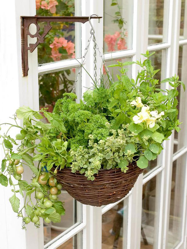 15 Unusual Vegetable Garden Ideas - Hanging basket container garden