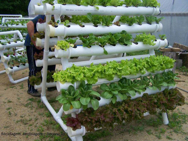 15 Unusual Vegetable Garden Ideas - PVC pipe gardena