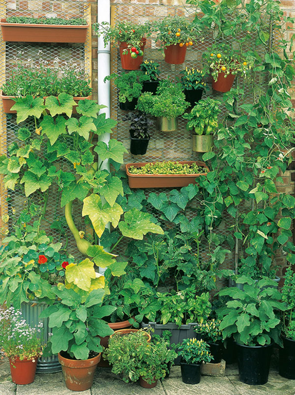 15 unusual vegetable garden ideas vertical vegetable garden - Flower And Vegetable Garden Ideas