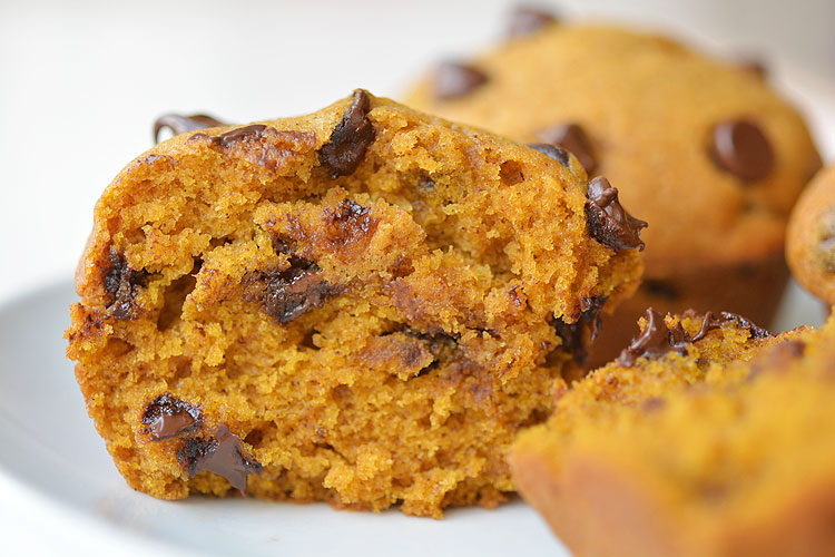 This recipe for chocolate chip pumpkin muffins is AMAZING! It's the perfect combination of pumpkin pie spice and moist, delicious, goodness!