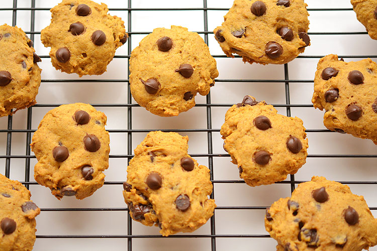 These pumpkin chocolate chip cookies are SO GOOD for a fall day! They are soft and moist and make the house smell sooooo good!