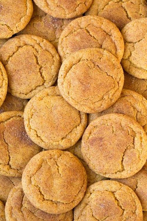 50+ Best Pumpkin Recipes - Pumpkin+Snickerdoodles