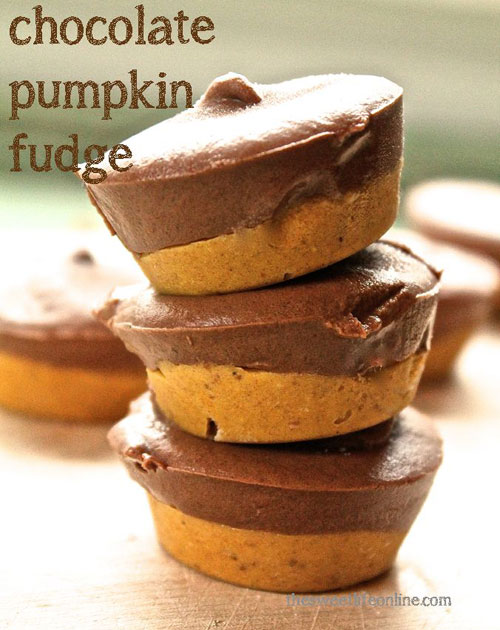 50+ Best Pumpkin Recipes - Sugar Free Chocolate Pumpkin Fudge