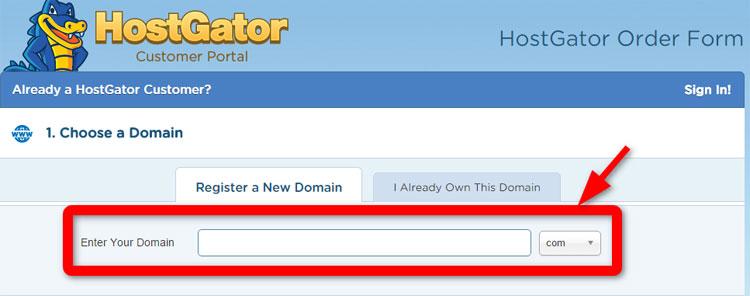 HostGator-3-Blank-Domain