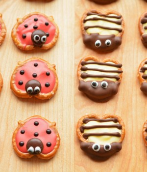 Pretzel Ladybugs and Bumblebees