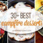 30+ Best Campfire Desserts
