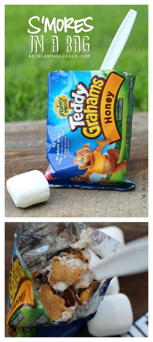 30+ Best Campfire Desserts - S'mores in a Bag