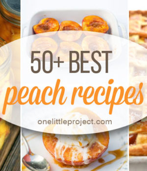 50+ Best Peach Recipes