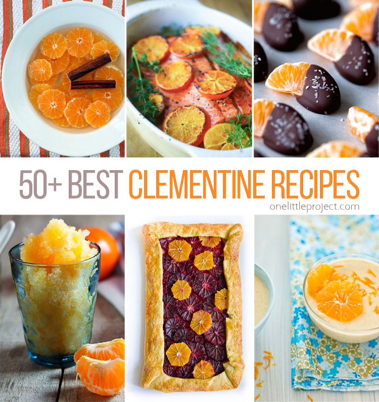 These clementine recipes look SO GOOD! I don't even know where to start! I had no idea there were so many different recipe ideas but they all look AMAZING!