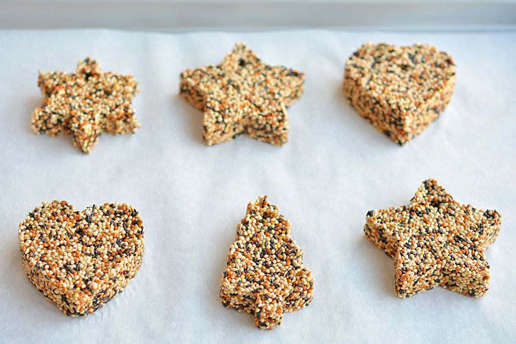 How to make birdseed ornaments easy birdseed ornaments recipe these birdseed ornaments are so easy and they look gorgeous on the trees outside they solutioingenieria Image collections