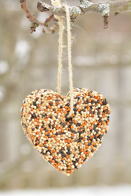 These Birdseed Ornaments Are So Easy And They Look Gorgeous On The Trees Outside