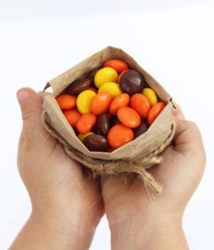 Mini Paper Bag Favors