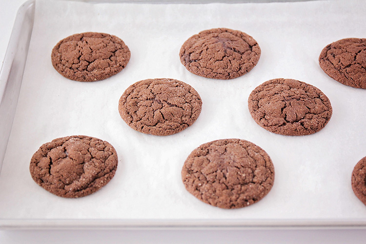 These sweet chocolate snickerdoodles are the perfect cookie for chocolate lovers! They're indulgent and delicious, and easy to make!