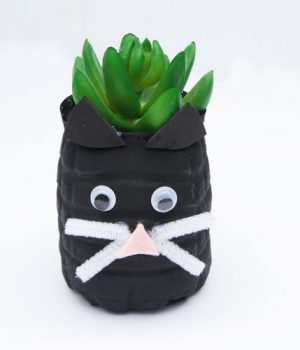 Water Bottle Cat Planter