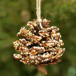 How to Make Pinecone Bird Feeders