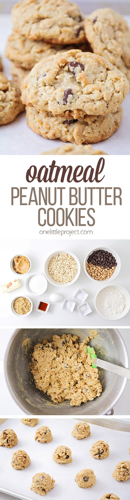 These chewy and sweet oatmeal peanut butter cookies are some of the most delicious cookies you will ever make! They're packed with peanut butter flavor!