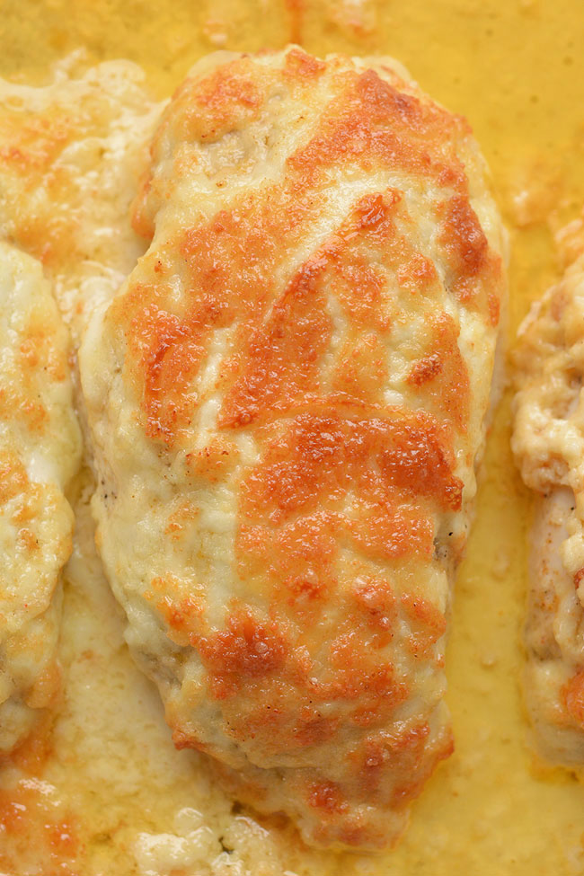 This recipe for creamy garlic parmesan chicken tastes AMAZING and it's so simple to prepare! The chicken is tender and juicy and the cheese melts in your mouth. Such a quick and easy dinner recipe that uses simple ingredients that the whole family will LOVE! This is my new go-to million dollar chicken recipe!