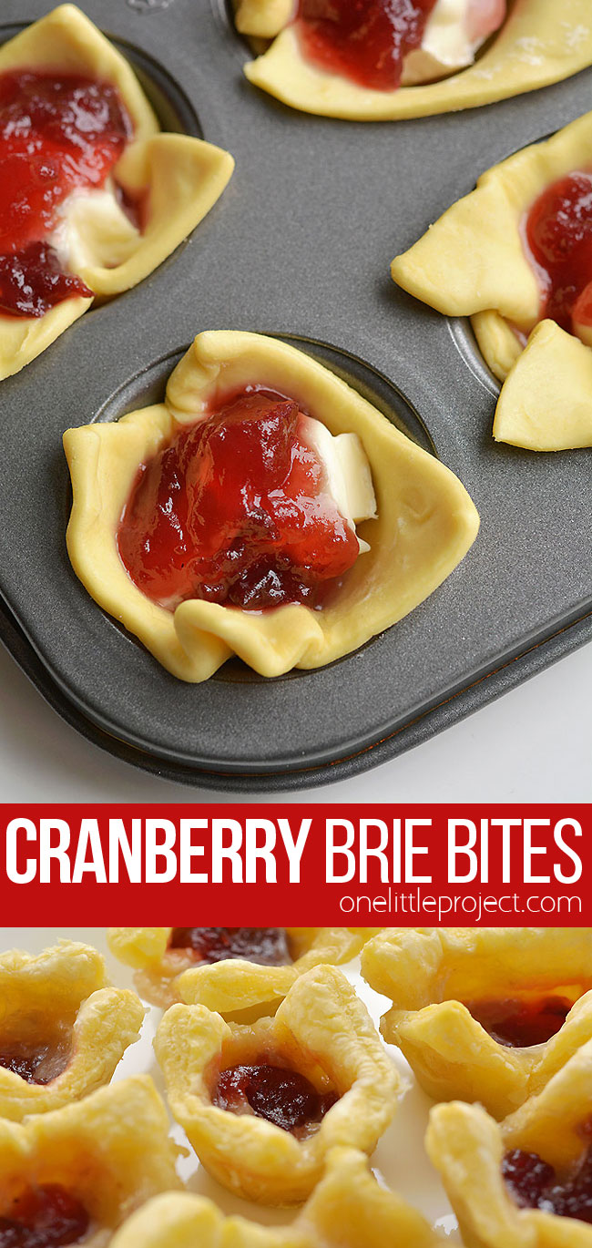 These cranberry brie bites taste SO GOOD and you only need 3 ingredients to make them! This is such an easy appetizer recipe and a great way to use leftover cranberry sauce! In less than 30 minutes you can make a delicious holiday appetizer - who can resist gooey, melty cheese!? They're perfect for Christmas parties, Thanksgiving, or any time of the year!