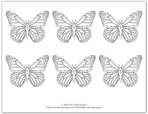 Monarch Butterfly Coloring Page 5