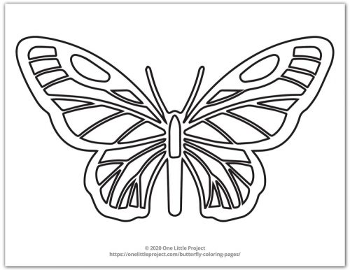 Butterfly Design 6