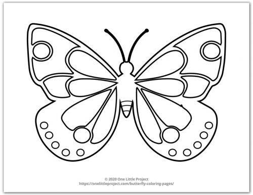 Butterfly Design 3