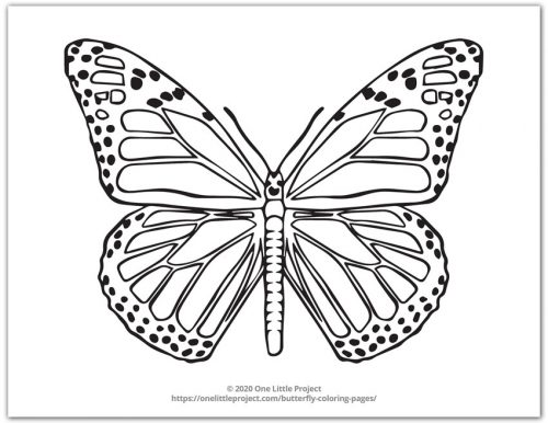 Monarch Butterfly Coloring Page - Butterfly Design 4