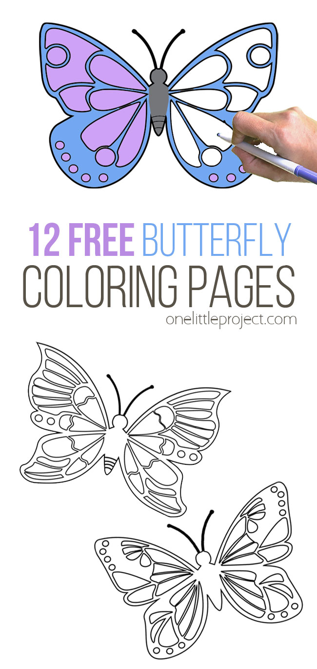 12 Free Butterfly Coloring Pages