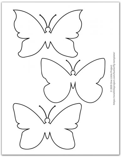 Various Butterfly Outlines